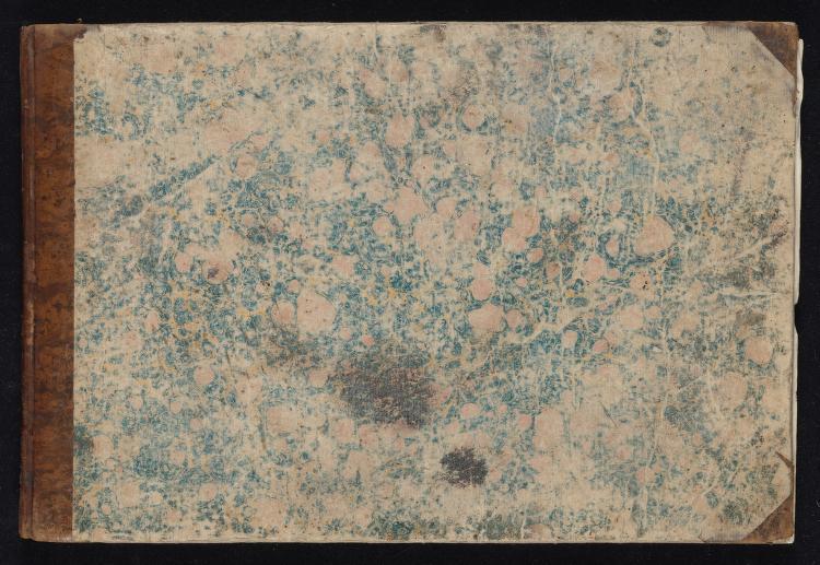 Esemplare di alfabeti diversi fregiati di fiori, di animali e di altri ornati by